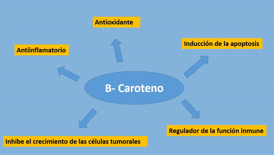 Alimentación y Cáncer: B- Carotenos