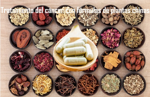 Complementary cancer treatment with Chinese Herbal Medicine